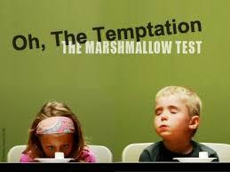 marshmallowtest
